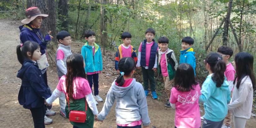 숲 2.jpg